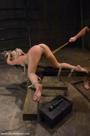 dominant male uses ropes