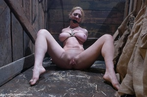 Busty blonde woman gets tied up and screwed with passion - XXXonXXX - Pic 14