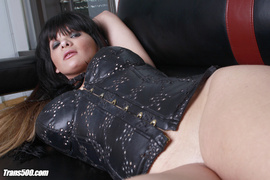 alluring, leather, lingerie, shemale