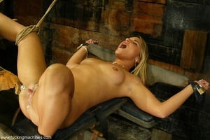 Slave frame and sex machine make blonde extremely excited - Picture 3
