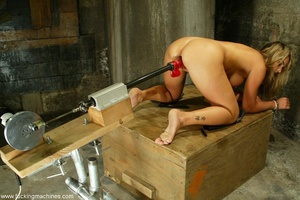 Slave frame and sex machine make blonde extremely excited - XXXonXXX - Pic 14