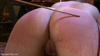 ass, caning, punishment, rough sex