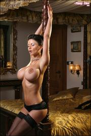 naughty brunette vixen poses