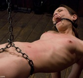 Slender miss is made to stroke Master's cock while she wears a ball-gag
