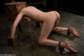 bondage, pierced pussy, pussy, slave