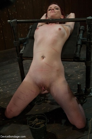 Red and raised cane marks adorn a ginger - XXX Dessert - Picture 4