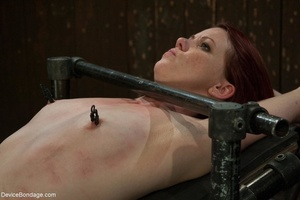 Red and raised cane marks adorn a ginger - XXX Dessert - Picture 5