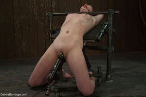 Red and raised cane marks adorn a ginger - XXX Dessert - Picture 6