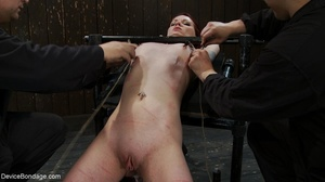 Red and raised cane marks adorn a ginger - XXX Dessert - Picture 12