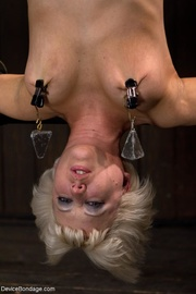 upside down sybian rides
