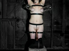 Go ahead and gawk at this slutty submissive slave, - XXXonXXX - Pic 17