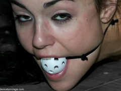 A small whiffle ball is used to gag a darling - XXXonXXX - Pic 17