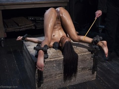 Long-haired black chick feels a butt plug pushed - XXXonXXX - Pic 14