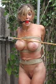 shapley babe stripped roped