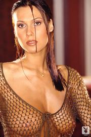 exquisite brunette brown mesh