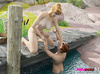 Blonde Domme on a dock makes a guy lick her feet and pussy while he's