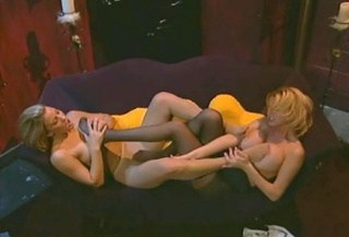 blondes sexy nylons shed