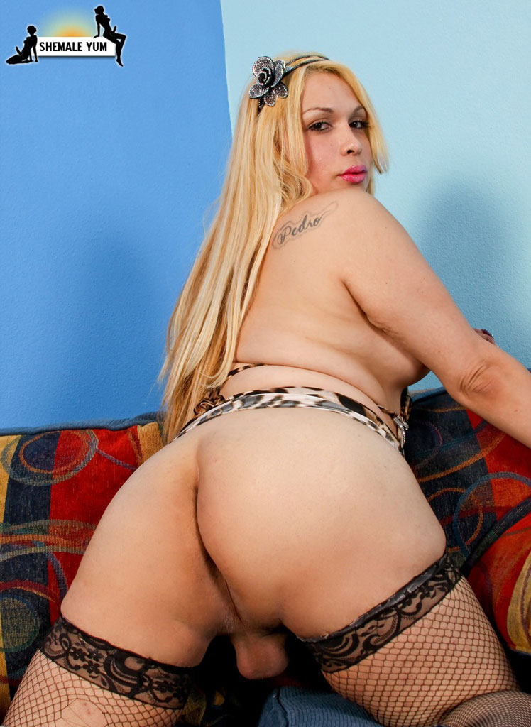 ass hole tranny