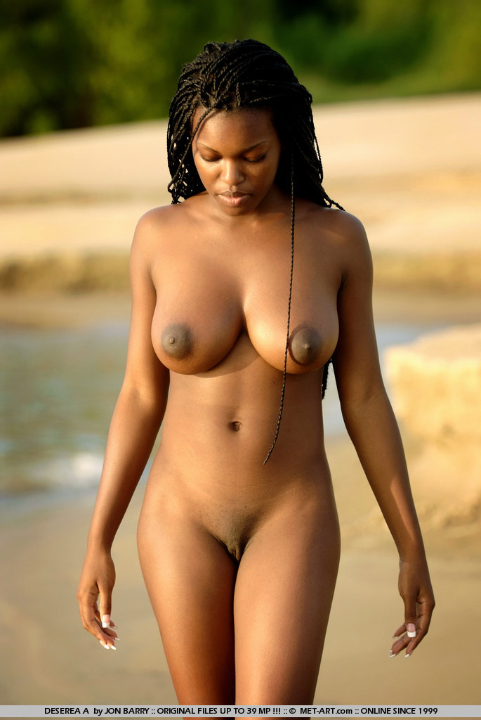Advise you beautiful dark skin black women nude
