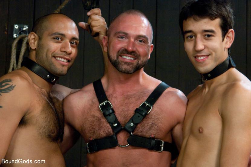 Gay van porno James zinkand homo pornoa