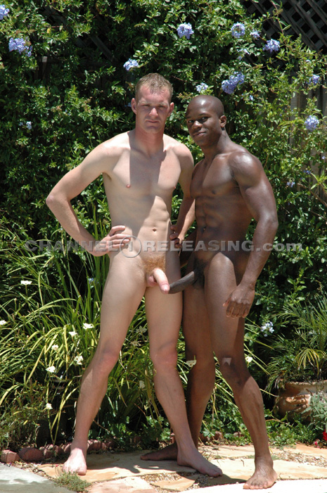 white interracial asian Gay