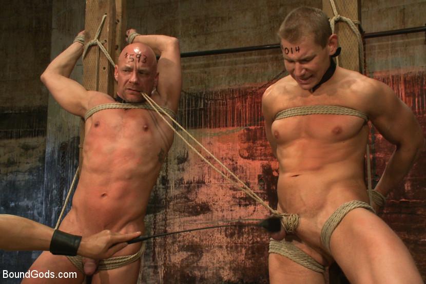 pussy galore homo köpenhamn shemale thailand