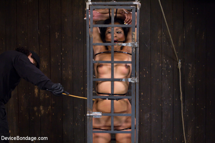Bitch in metal cage gets strapped to floor - XXX Dessert ...