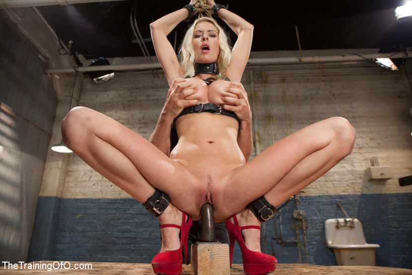 Bdsm Fetish Humiliated Porn Star