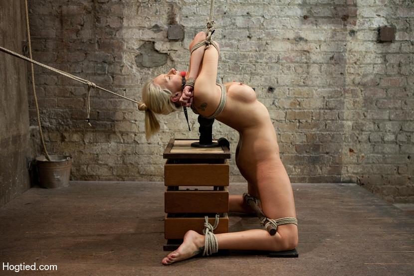 free Predicament gallery bondage