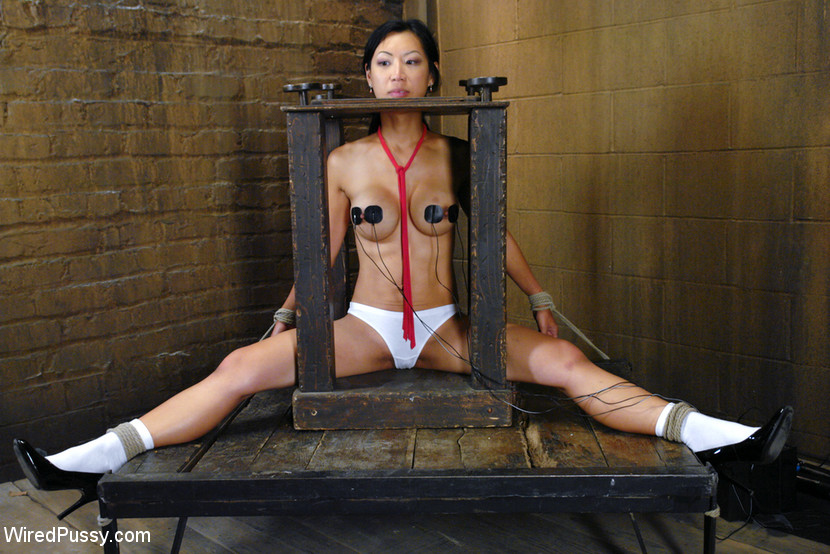 Asian pussy wired