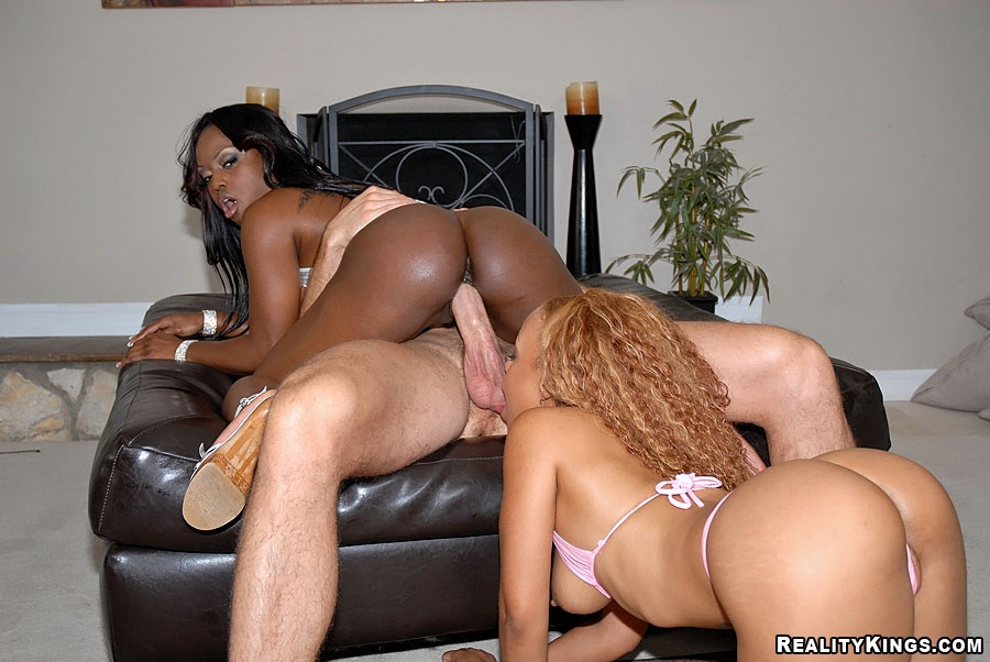 Big Booty Bbc Doggystyle