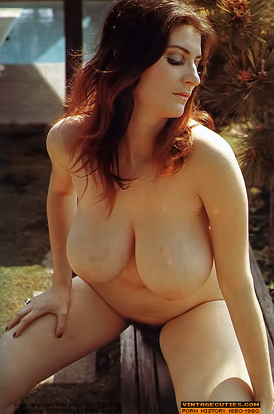 Brunette Big Tits Fucked