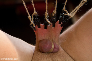 Nuts abused slave guy gets his ass hole  - XXX Dessert - Picture 4