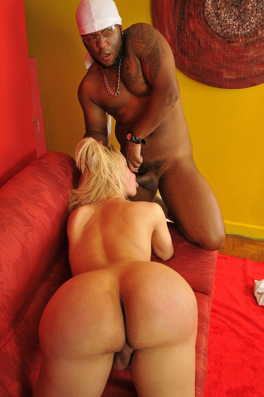 black big ass shemale porn