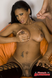stunning transsexual babe exclusive
