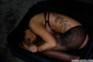 Slut in a suit case wants to be torured  - XXX Dessert - Picture 1