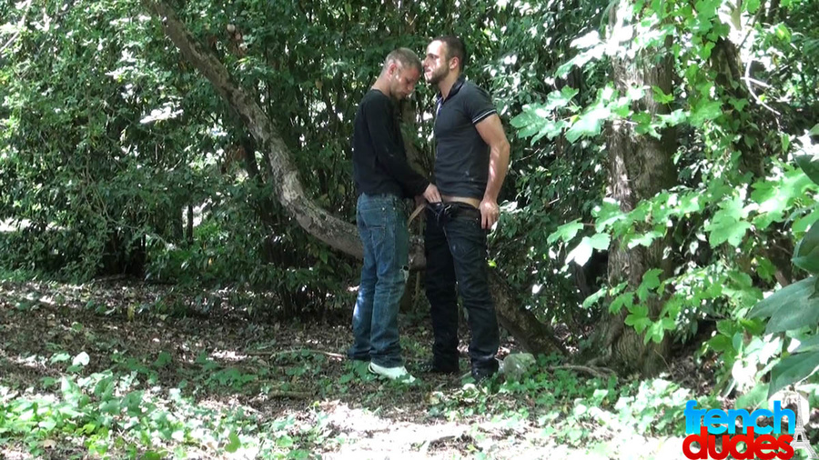 Gay porn in the forest