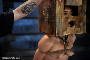 Poor girl with a wodden box with hole on her head sitiing on a fucking machine when master caning her heels - XXXonXXX - Pic 14