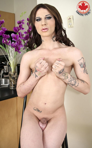 Tattooed long-hared tranny in a sexy bla - XXX Dessert - Picture 14