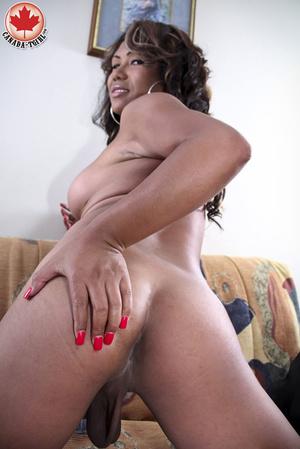 Ebony busty ladyboy in a sexy dress and  - XXX Dessert - Picture 11