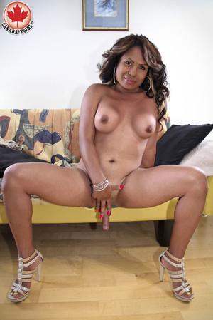 Ebony busty ladyboy in a sexy dress and  - XXX Dessert - Picture 15