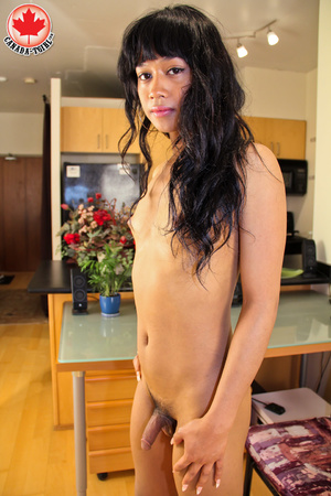 Swarthy Asian T-girl in a black dress an - XXX Dessert - Picture 15