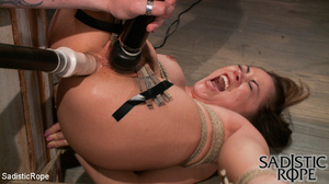 Ponytailed hogtied girl with a gag-ball  - XXX Dessert - Picture 1
