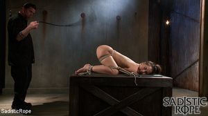 Ponytailed hogtied girl with a gag-ball  - XXX Dessert - Picture 13