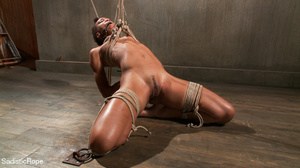 Hogtied ebony slut gets her pussy sadist - Picture 5