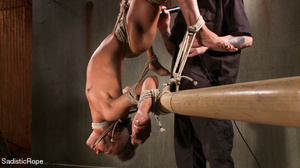 Hogtied ebony slut gets her pussy sadist - Picture 7