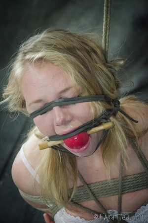 Blonde hogtied with a gag-ball tortured  - XXX Dessert - Picture 10