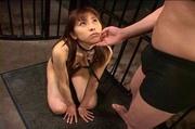 humiliated japanese bitch dog