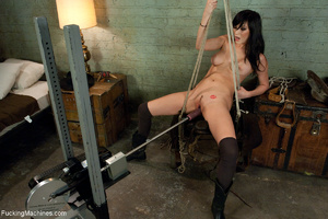 Brunette bitch getting high on a sling-s - XXX Dessert - Picture 1