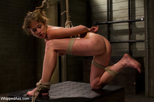 Sexy girls get painfully tied and bent o - Picture 14